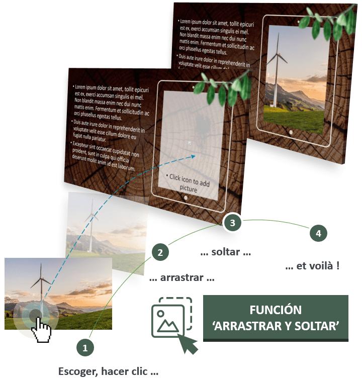 El modelo PowerPoint RODAJAS DE MADERA está diseñado con la función Arrastrar y Soltar